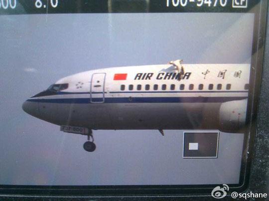 网传一客机降落虹桥机场时遭鸟击 国航否认