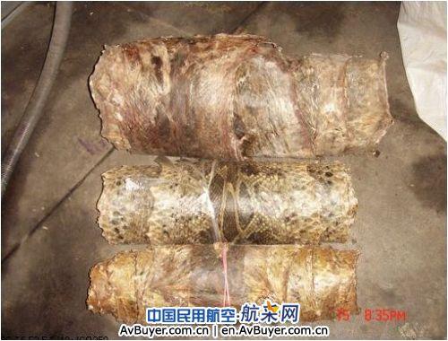 昆明机场安检查获3卷珍稀蟒蛇皮 已移交森林公安