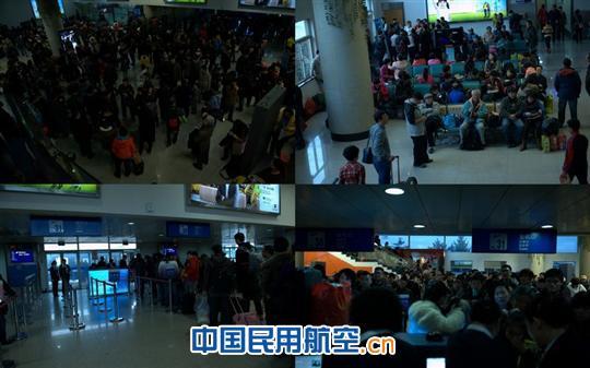 """青岛机场客运部紧急启动""""红马甲服务预案"""",从内部业务室,其他一线科室"""