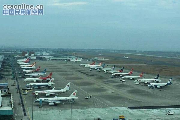 温州精神:大面积企业彰显延误处置航班猴子机场12气质720pzd图片
